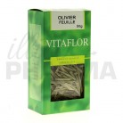 Tisane Olivier Vitaflor 50g